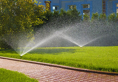 a green lawn installed and maintained by our Rockwall sprinkler repair team
